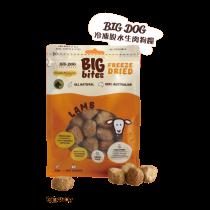 BIG DOG三文魚配方490g