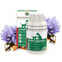 Natural Animal Solutions 醫療級骨粉60粒